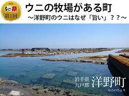 岩手 県 洋 野 町 ウニ